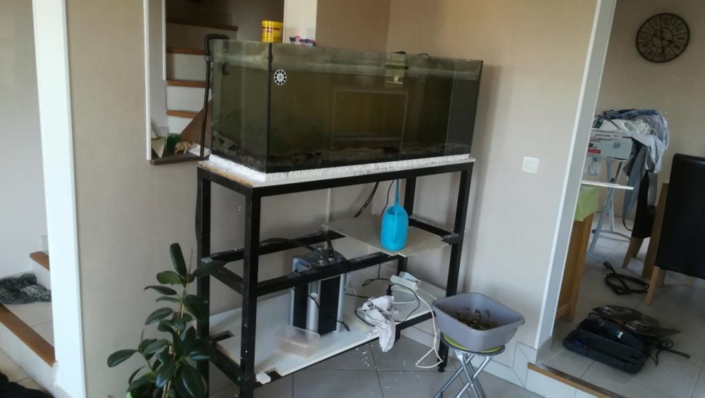 Nouvel aquarium 300l pour la maison - Page 3 Img_2033
