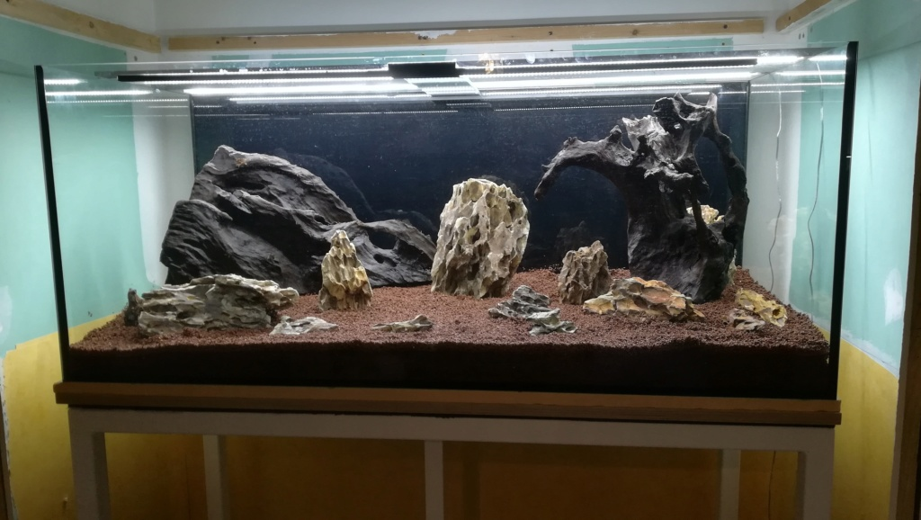 Nouvel aquarium 300l pour la maison - Page 3 Img_2034