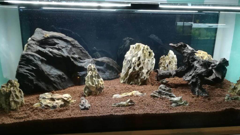 Nouvel aquarium 300l pour la maison - Page 3 Img_2039