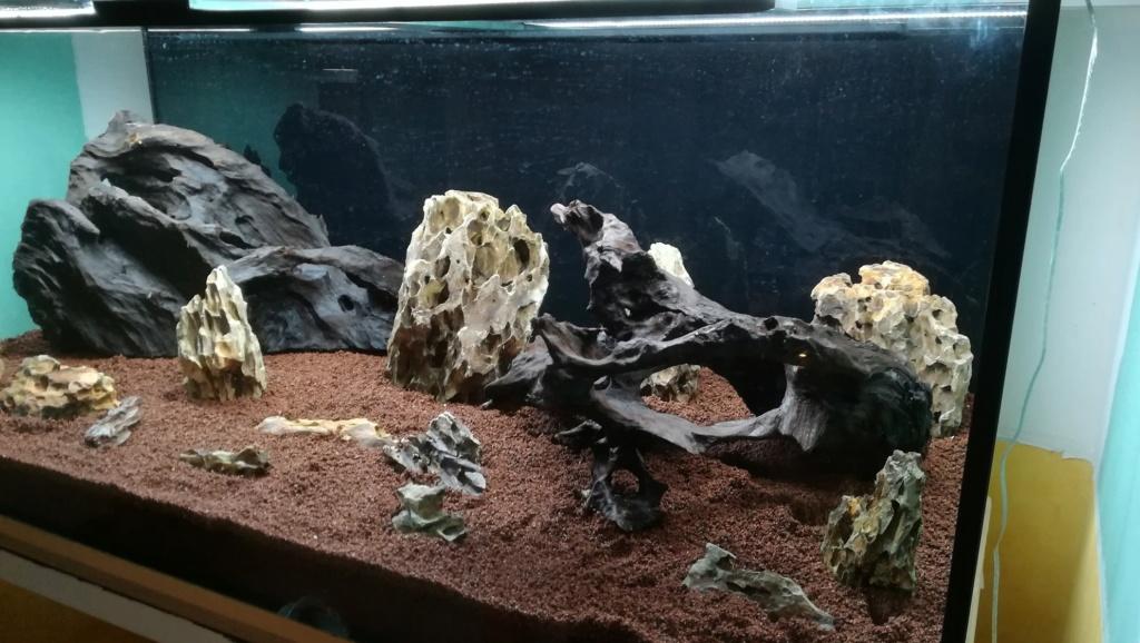 Nouvel aquarium 300l pour la maison - Page 3 Img_2040