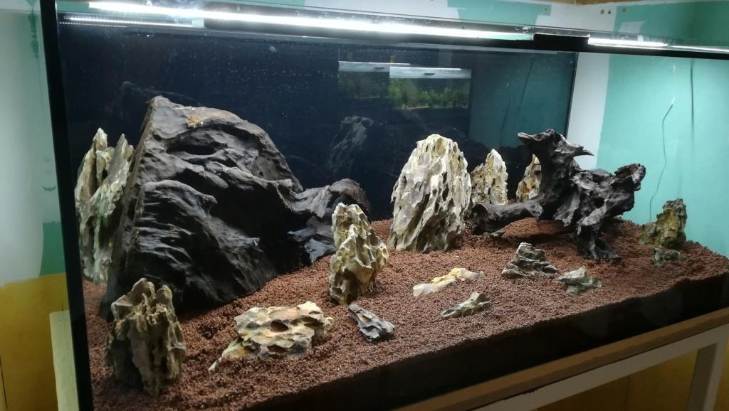 Nouvel aquarium 300l pour la maison - Page 3 Img_2041