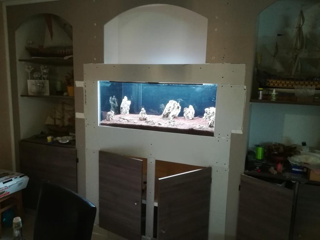 Nouvel aquarium 300l pour la maison - Page 3 Img_2045