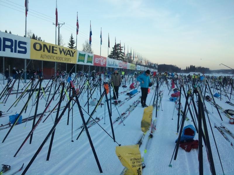 La Vasaloppet : plus longue course de ski de fond au monde 82432510
