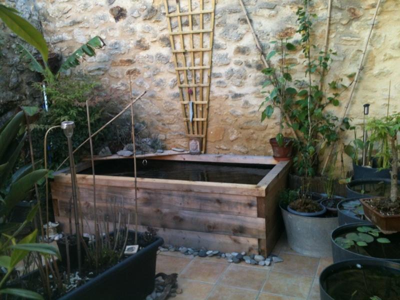 bassin hors sol koi les bassins nimo. Black Bedroom Furniture Sets. Home Design Ideas