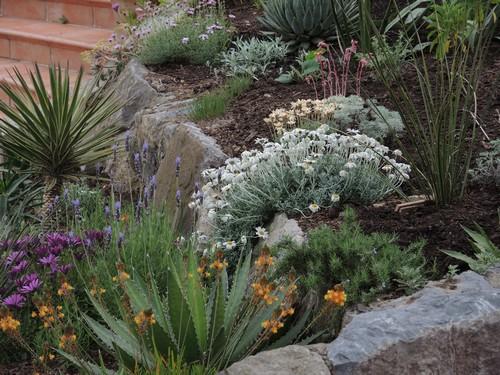 rocaille au printemps chez Jeyssi Dscn4414