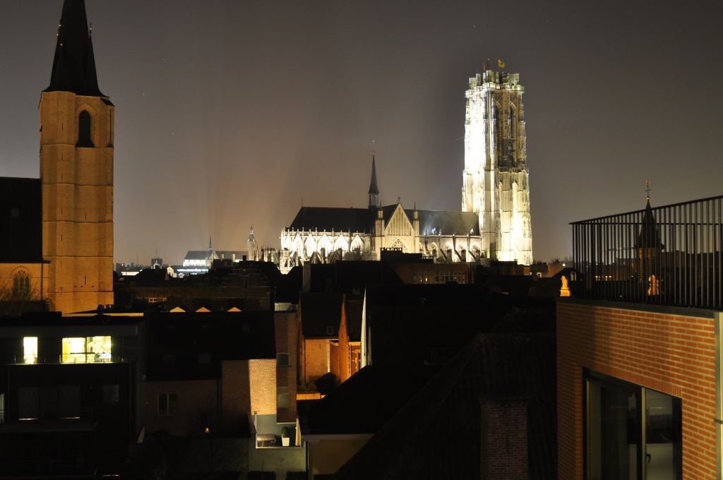 Cu Wizzair in Belgia _dsc0126
