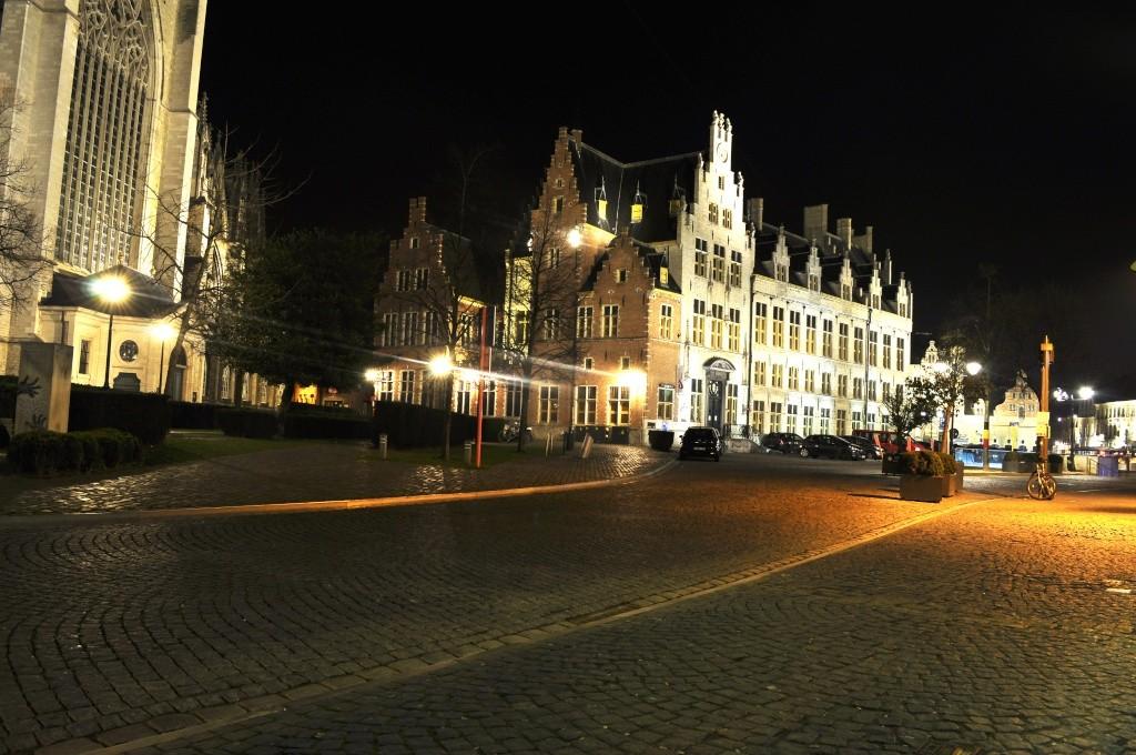 Cu Wizzair in Belgia _dsc0137