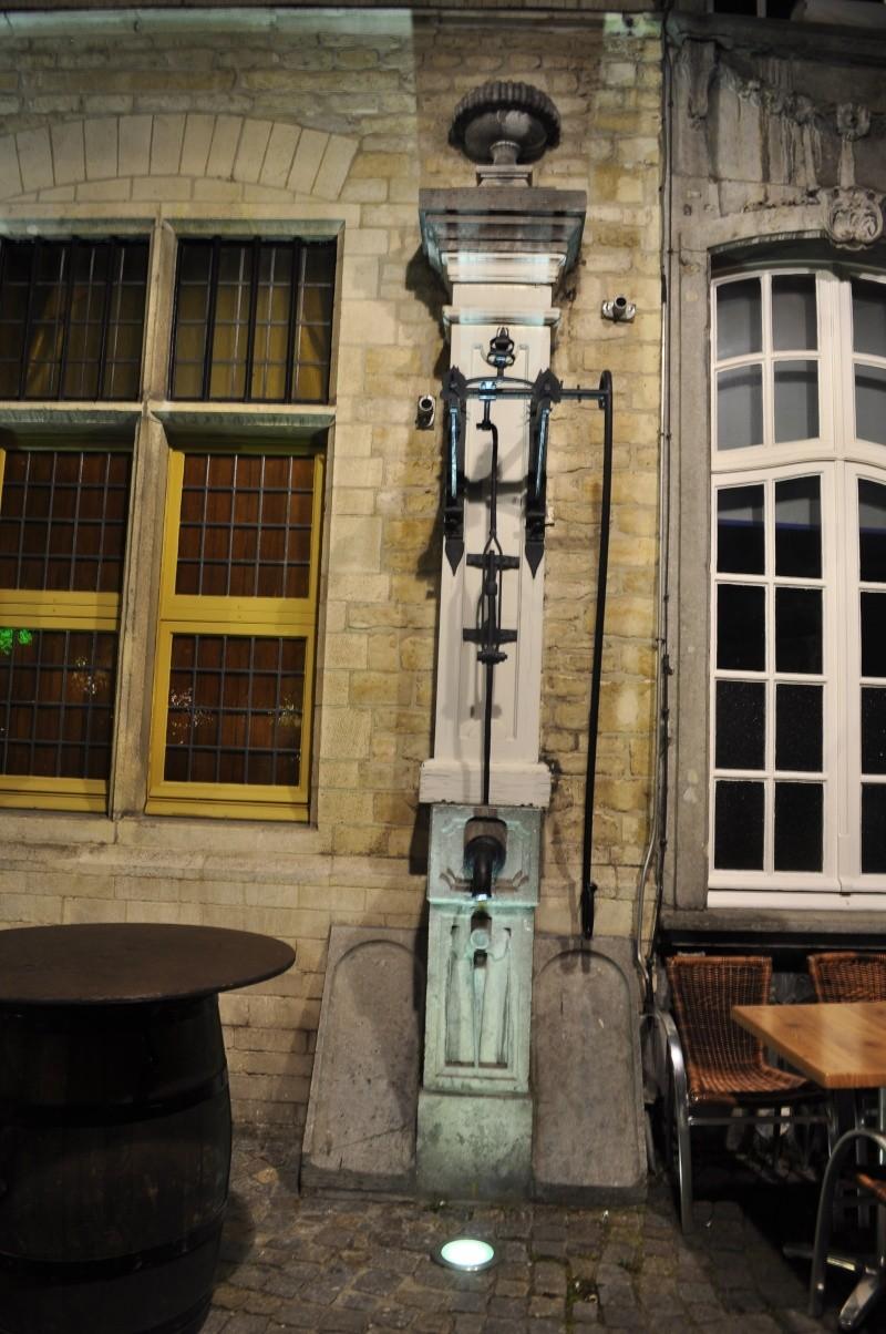 Cu Wizzair in Belgia _dsc0151