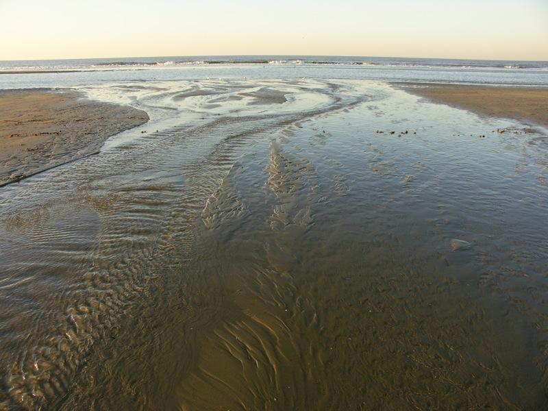 Face à la mer 2008-010