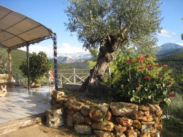 Juste pour vous donner envie de venir en Corse Romer_11