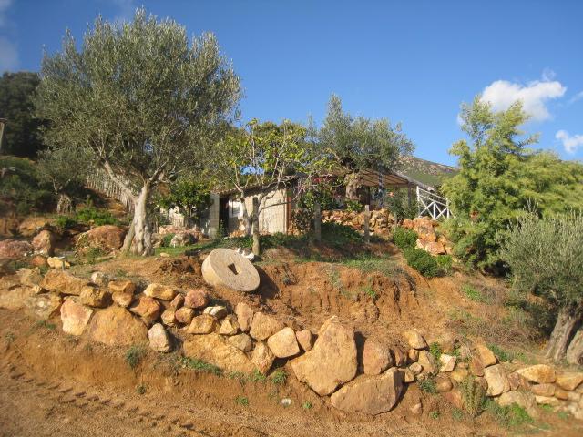 Juste pour vous donner envie de venir en Corse Romer_14