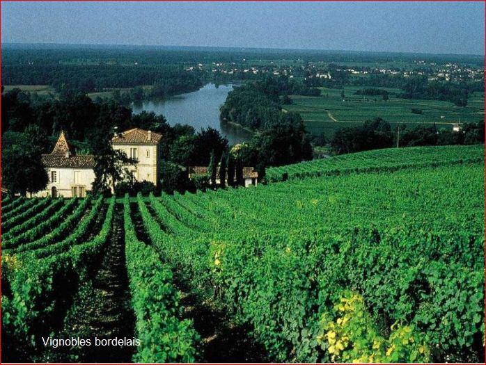 Qu'elle est belle notre Aquitaine!!!!!! Balade10