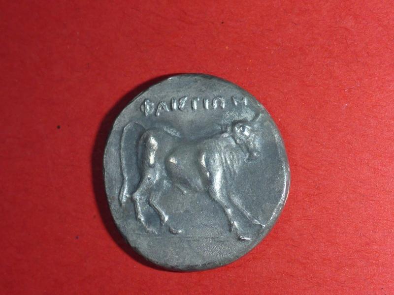 Statère de Phaïstos en Crête ??? P1190515