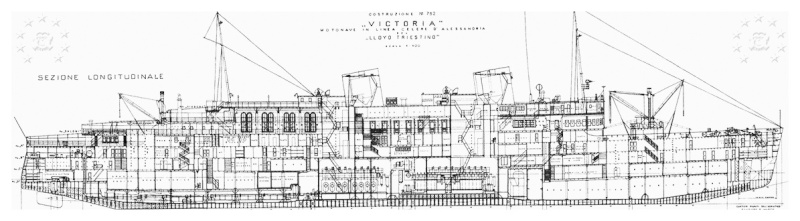 motonave 'Victoria' - Lloyd Triestino - 1931 111