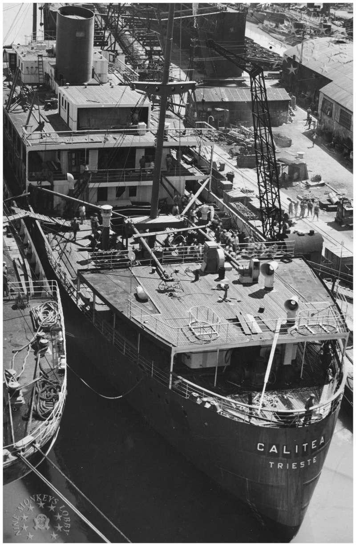 "motonave ""Calitea"" - Lloyd Triestino -1933 9_cali10"
