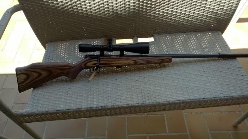 Mes carabines Wp_20110
