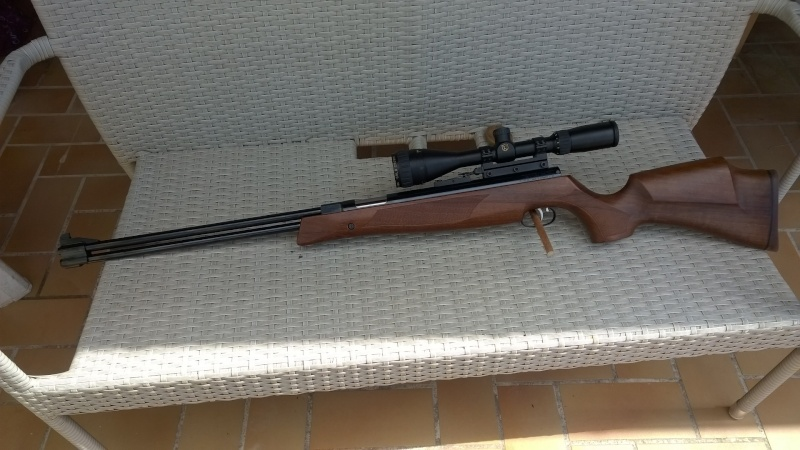 Besoin d'aide choix carabine Wp_20111