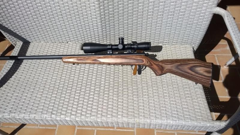 Mes carabines Wp_20112