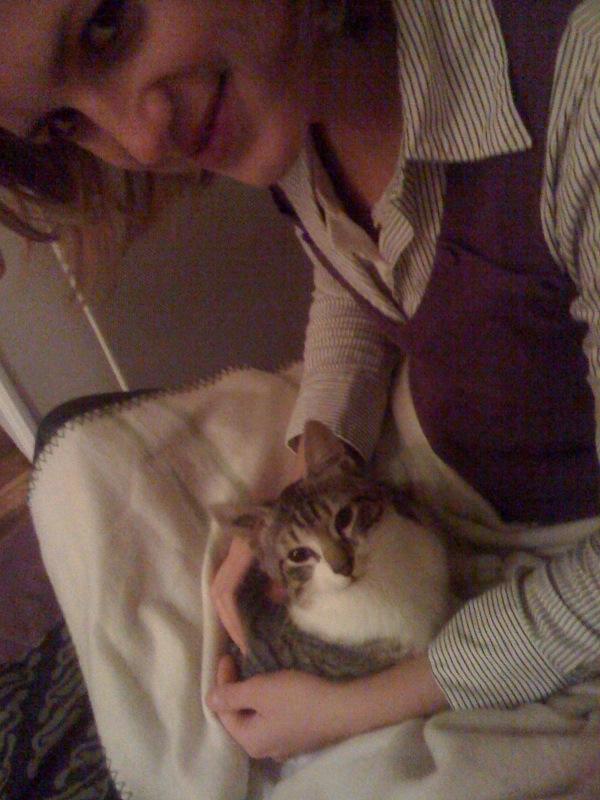 JAzz, chatonne seal point de 3 mois environ et son frère Ravel, petit chaton tigré et blanc de 3 mois Photo-10