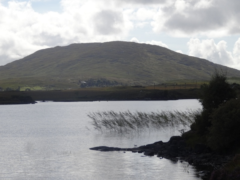 Irlande 2014 - Page 2 Dsc08710