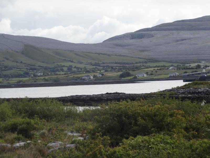 Irlande 2014 - Page 2 Dsc08820