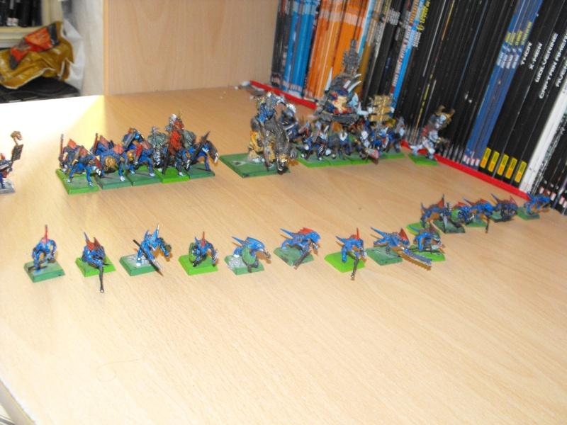 Les armées de Tio Dscf3210