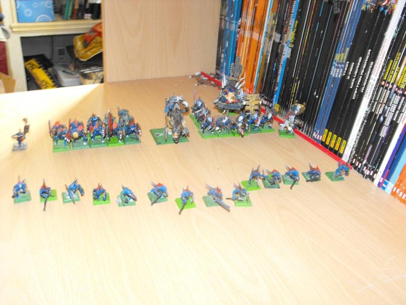 Les armées de Tio Dscf3211