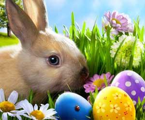 Bonjour...Joyeuses Pâques, mangez du chocolat  ♥ Paques10
