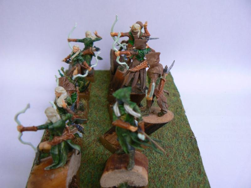 Mon Armée Elfes Sylvains Forest12