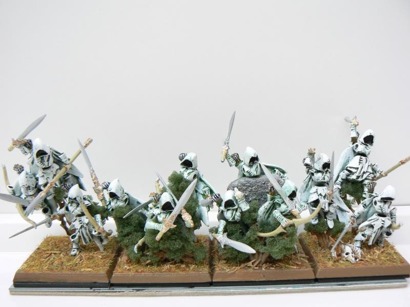Mon Armée Comte Vampire. P1110112
