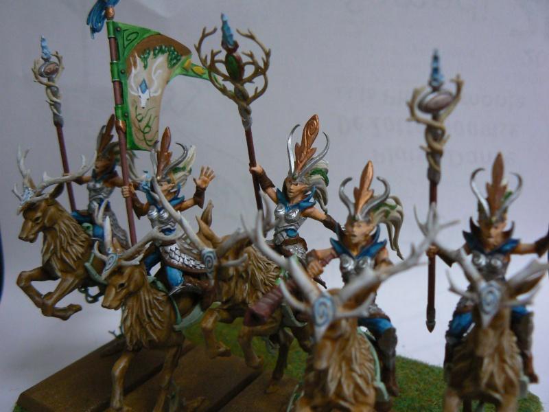 Mon Armée Elfes Sylvains Soeurs10