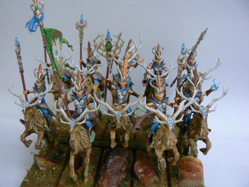 Mon Armée Elfes Sylvains Soeurs13