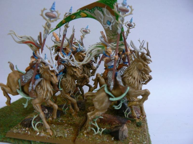 Mon Armée Elfes Sylvains Soeurs14