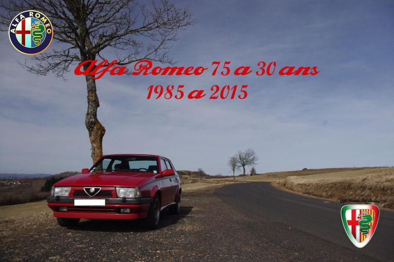 le club fête les 30 ans de l'alfa romeo 75  75_30_11
