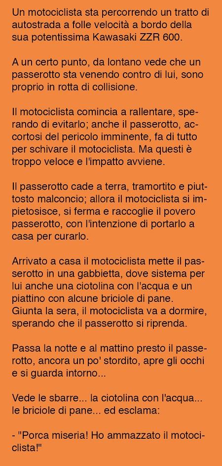 Barzellette  e battute  - Pagina 2 Moto10