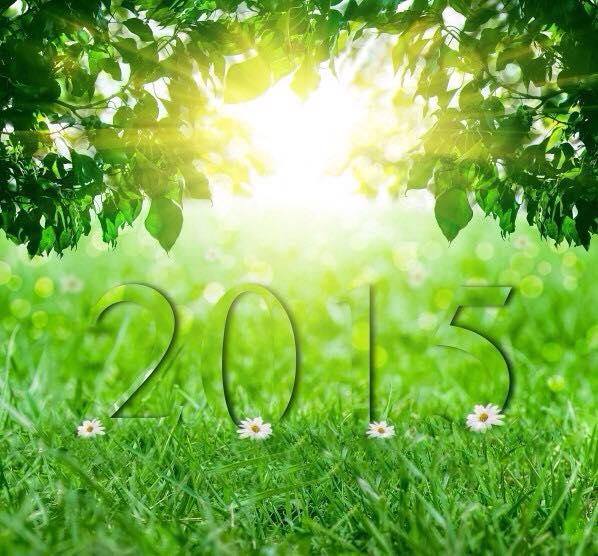 Rendez-vous aux jardins à Wangen les 6 et 7 juin 2015 avec l'association Découvrir. 11295710
