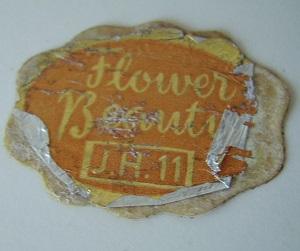 Flower Beauty - Page 2 Flower13
