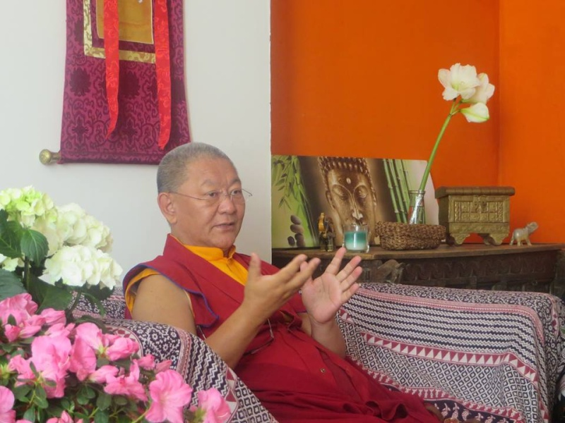 Visite annuelle de Ringou Tulku Rinpotché 11149410