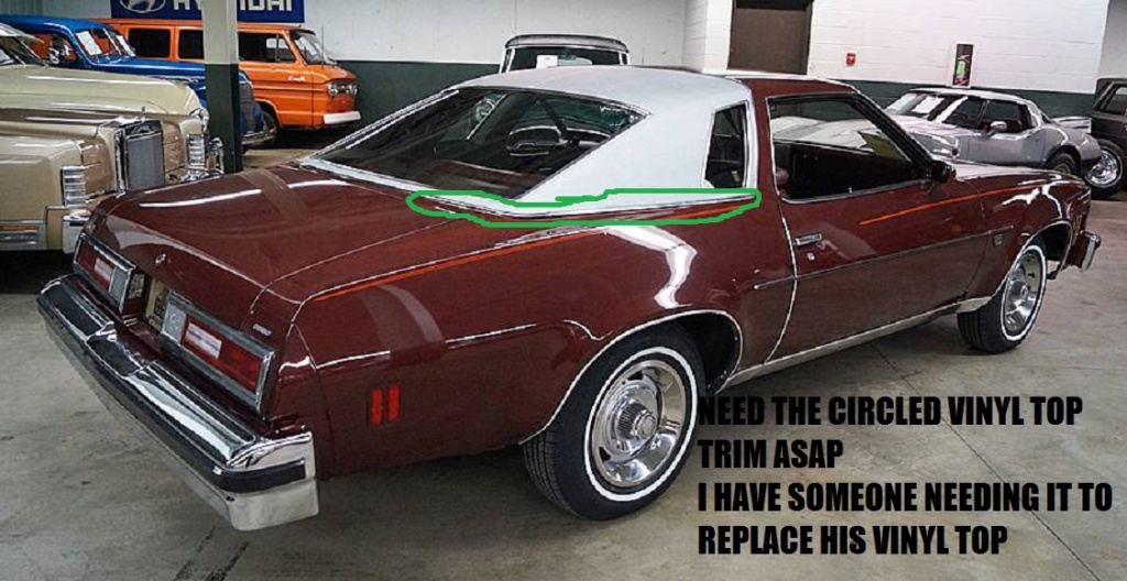 NEEDED ASAP Vinyl Top Trim Circled In Picture Cash In Hand
