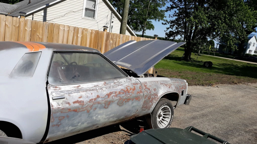 Chevelle SE update 6/17/2020 - Page 11 10256110