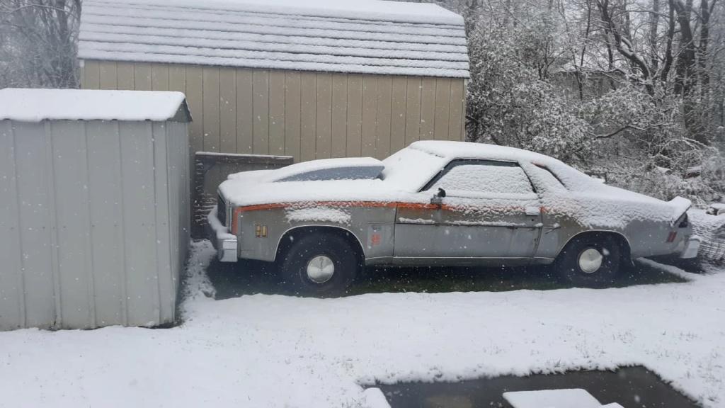 1977 Chevelle SE part 2 58698510