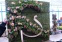 2 murs végétaux faits par mes collègues fleuristes  P1100611
