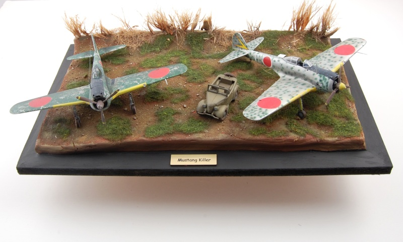 Gull Wings - 1/72 Socle711