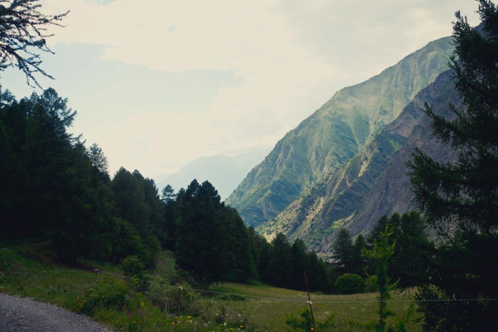 Road trip Alpes : Les plus belles pistes Dsc_0016
