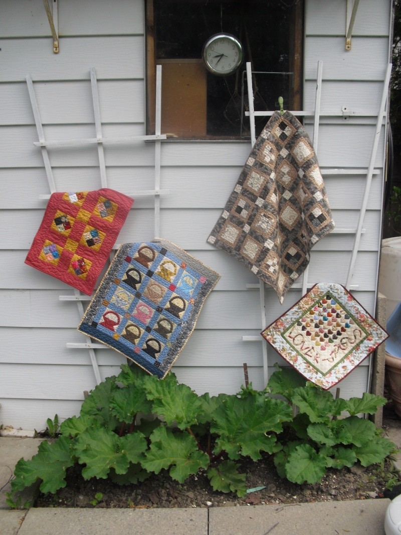 Small Quilts/Wallhangings - Page 8 Cimg3813
