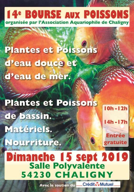 Bourse Chaligny (54) - 15 septembre 2019 A3_poi10