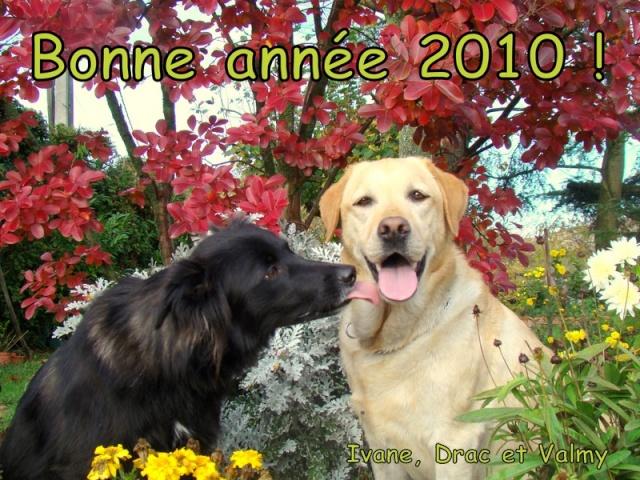 BONNE ANNEE 2010 Bonne_10