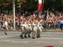 (N°57)Photos de la cérémonie commémorative de la fête nationale et du défilé du 14 juillet 2014 sur l'Avenue des Champs Elysée à Paris. ( Photos de Raphaël ALVAREZ ) Paris426