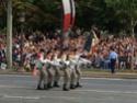 (N°57)Photos de la cérémonie commémorative de la fête nationale et du défilé du 14 juillet 2014 sur l'Avenue des Champs Elysée à Paris. ( Photos de Raphaël ALVAREZ ) Paris433