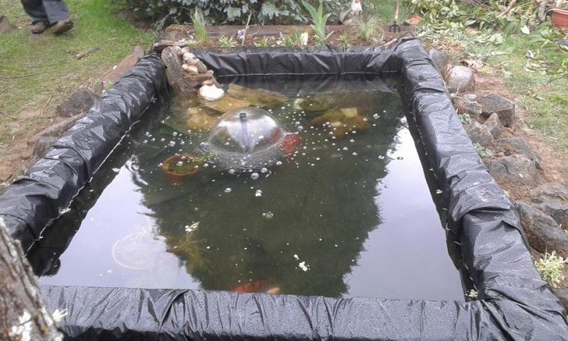 bassin 2000l 11082510